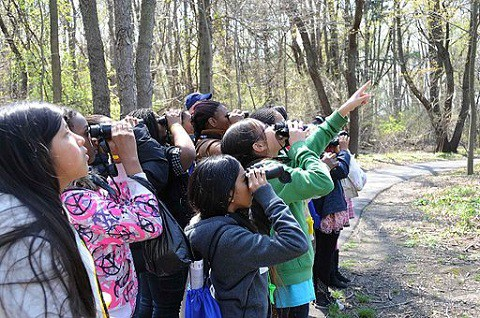 A group of kids uses binoculars to look at birds
